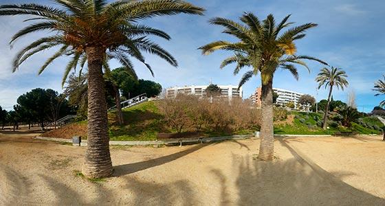Portada-Foto-360-Parque-con-Palmeras-560x300-GrupoAudiovisual-Descargas360