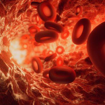 Animación 3D para medicina