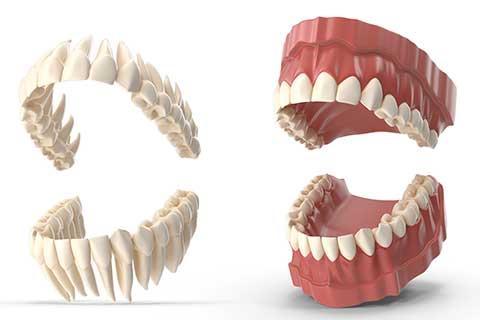 Simulación odontológica en 3D